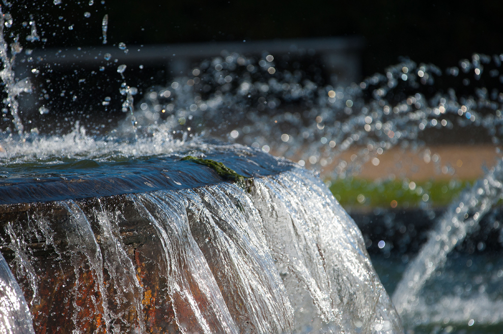 A basin of the fountain in action