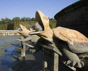 亀とトカゲ