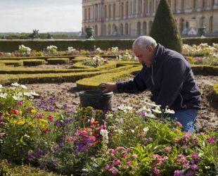 南花壇で作業する庭師