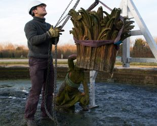 The sculptures of the Latona Parterre are taken away for restoration